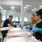 st. patrick's day, irish, feast, tradition, company culture, best places to work, best company, ireland, corned beef, holiday